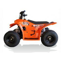 BUZZ 50 - quads for kids from quadzilla