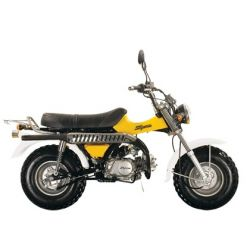 Skyteam T-Rex ST50-11 Motorcycle