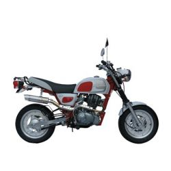 Skyteam Cobra 50 Motorcycle